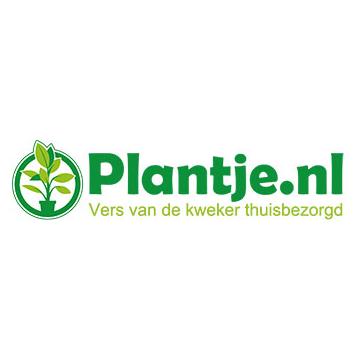Bestel je planten online via Plantje.nl en betaal geen verzendkosten